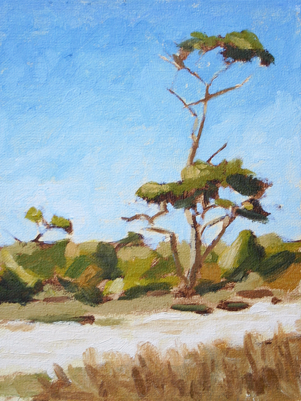 Beach Pine - Impressionist Painting by Adam Houston