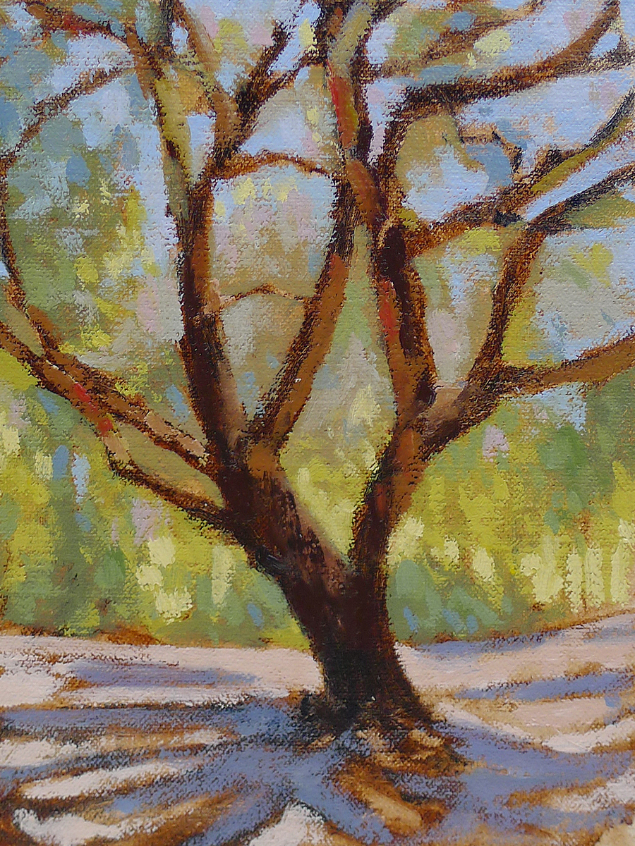 Oak at Sutter's Mill - Impressionist Painting by Adam Houston